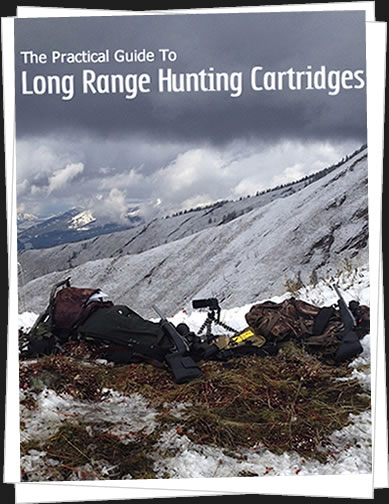 long range hunting cartridges